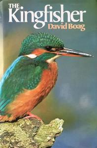Het boek 'The Kingfisher' van David Boag