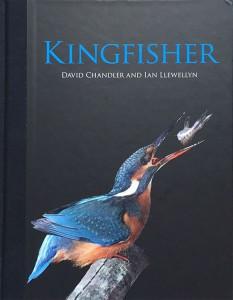 Het boek 'Kingfisher' van David Chandler